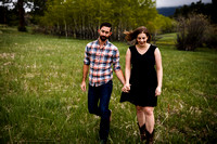 Andrew_Molly_Engagements-Edited-8
