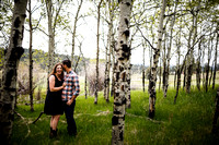 Andrew_Molly_Engagements-Edited-17
