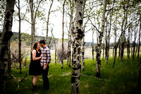 Andrew_Molly_Engagements-Edited-18